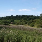 Evesham Battlefield
